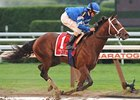Alpha, Fast Falcon Work for Travers Bids