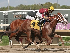 Little Drama wins the 2011 Philmont Stakes.