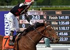 Texas Red Provides Dwyer Stakes Star Power