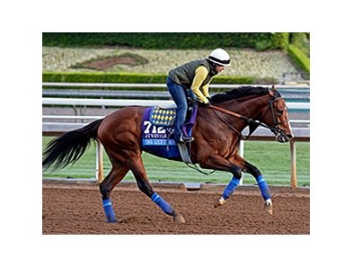 "One Lucky Dane<br><a target=""blank"" href=""http://photos.bloodhorse.com/BreedersCup/2014-Breeders-Cup/Works/i-gN892Mw"">Order This Photo</a>"