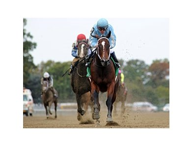 Cluster of Stars runs away from the competition in the Iroquois Stakes.
