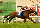 "Global Hunter's biggest win came in the 2009 Eddie Read Stakes.<br><a target=""blank"" href=""http://www.bloodhorse.com/horse-racing/photo-store?ref=http%3A%2F%2Fpictopia.com%2Fperl%2Fgal%3Fprovider_id%3D368%26ptp_photo_id%3D8362997%26ref%3Dstory"">Order This Photo</a>"