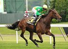 "Mystical Star bounds home to win the New York Stakes.<br><a target=""blank"" href=""http://photos.bloodhorse.com/AtTheRaces-1/at-the-races-2012/22274956_jFd5jM#!i=1937195062&k=pCBGgXF"">Order This Photo</a>"