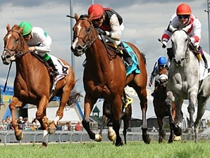 Glitter Rox wins the 2010 Avowal Stakes.