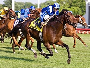 Tajaaweed wins the 2011 Arlington Handicap.