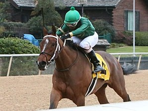 Sister Ginger wins the 2013 Martha Washington Stakes.