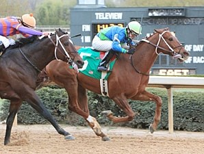 It Happened Again wins the 2011 Razorback Handicap.