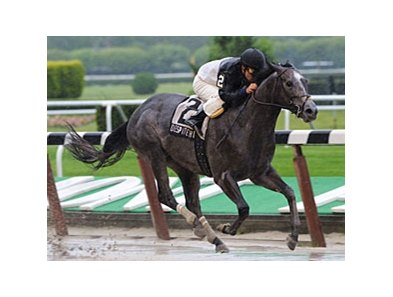 "Despite the Odds splashes to victory in the Hill Prince.<br><a target=""blank"" href=""http://www.bloodhorse.com/horse-racing/photo-store?ref=http%3A%2F%2Fpictopia.com%2Fperl%2Fgal%3Fprovider_id%3D368%26ptp_photo_id%3D8199919%26ref%3Dstory"">Order This Photo</a>"