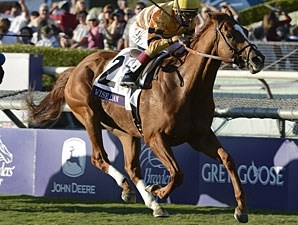 Wise Dan in the Breeders' Cup Mile.