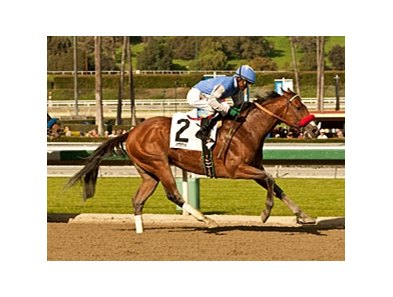 Goldencents will get a new rider for the Pat O'Brien Stakes.