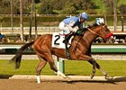 Goldencents delivers in the Sham Stakes under Kevin Krigger.
