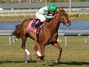 Khancord Kid wins the 2010 Herecomesthebride.