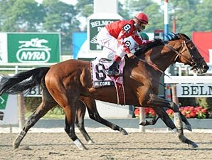 Alcomo Takes Brooklyn Handicap by a Whisker