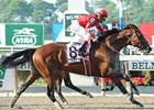 "Alcomo nips Gabriel's Hill to take the Brooklyn. <br><a target=""blank"" href=""http://www.bloodhorse.com/horse-racing/photo-store?ref=http%3A%2F%2Fpictopia.com%2Fperl%2Fgal%3Fprovider_id%3D368%26ptp_photo_id%3D9053168%26ref%3Dstory"">Order This Photo</a>"