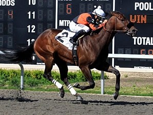 Gator Bay wins the 2011 Presidentialaffair Stakes.