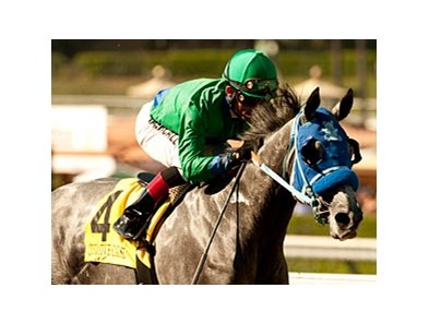 Creative Cause faces 5 in the San Vicente Stakes at Santa Anita.