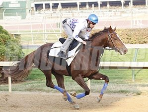 Espoir City works at Churchill Downs on October 24, 2010.