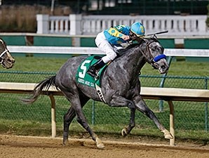 El Kabeir wins the 2014 Kentucky Jockey Club Stakes.