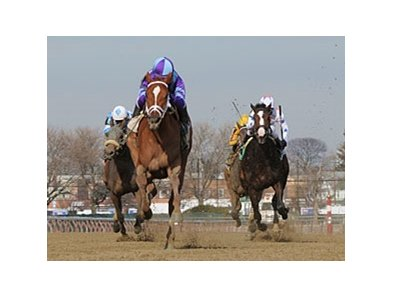 "Princess of Sylmar leaves the others behind in the Busher Stakes.<br><a target=""blank"" href=""http://photos.bloodhorse.com/AtTheRaces-1/at-the-races-2013/27257665_QgCqdh#!i=2347674750&k=sW8nd6V"">Order This Photo</a>"