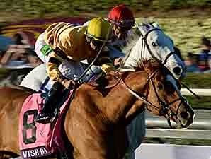 Wise Dan Rolls Again in Breeders' Cup Mile