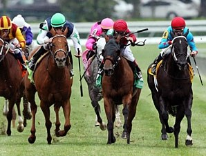 Flash Mash wins the 2012 Giant's Causeway.