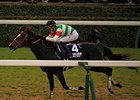 Epiphaneia wins the 2014 Japan Cup.
