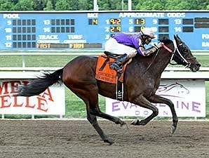 Dorsey's Dream wins the 2014 Louisiana Legends Starter Stakes.