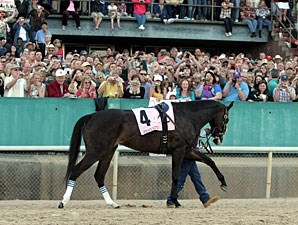 Zenyatta before the 2010 Apple Blossom.