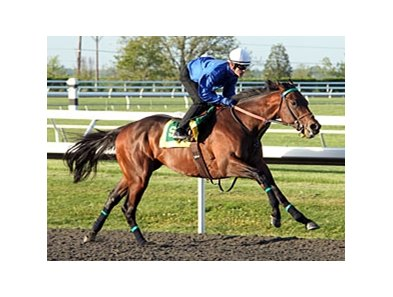 Ever So Lucky worked 5 furlongs in April 10 at Keeneland.