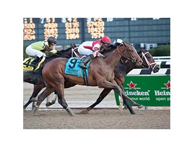 "Normandy Invasion finished 2nd in the Wood and the Remsen (shown).<br><a target=""blank"" href=""http://photos.bloodhorse.com/AtTheRaces-1/at-the-races-2012/22274956_jFd5jM#!i=2240663752&k=M8GJrZc"">Order This Photo</a>"
