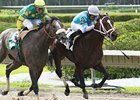 Good Morning Diva won the Calder Derby on April 14.