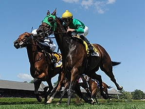 King Kreesa wins the Weset Point Stakes at Saratoga August 24, 2014.
