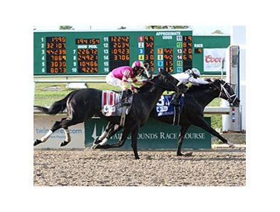 "Revolutionary fights off Mylute to win the Louisiana Derby.<br><a target=""blank"" href=""http://photos.bloodhorse.com/AtTheRaces-1/at-the-races-2013/27257665_QgCqdh#!i=2433294136&k=Cg52gzX"">Order This Photo</a>"
