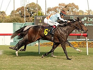 Full Ransom wins the 2013 Miesque Stakes.
