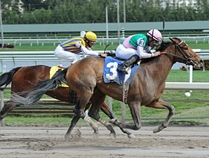 Emollient - Allowance Win, February 16, 2013.
