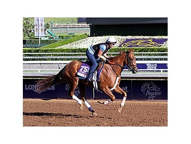 "Top Decile <br><a target=""blank"" href=""http://photos.bloodhorse.com/BreedersCup/2014-Breeders-Cup/Works/i-zBF3Gc7"">Order This Photo</a>"