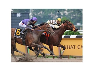"Any Limit holds off Wild Gams to take the First Flight.<br><a target=""blank"" href=""http://www.bloodhorse.com/horse-racing/photo-store?ref=http%3A%2F%2Fpictopia.com%2Fperl%2Fgal%3Fprovider_id%3D368%26ptp_photo_id%3D5022859%26ref%3Dstory"">Order This Photo</a>"