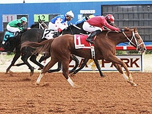 For Cash wins the 2013 Zia Park Derby.