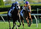 Even Dozen Challenge in Miesque Stakes