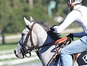 Tapitsfly Favored in Distaff Turf Mile