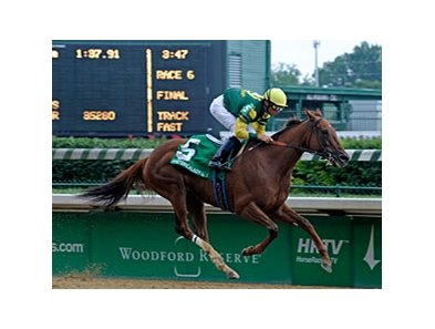 "Hystericalady cruises to victory in the Fleur de Lis.<br><a target=""blank"" href=""http://www.bloodhorse.com/horse-racing/photo-store?ref=http%3A%2F%2Fpictopia.com%2Fperl%2Fgal%3Fprovider_id%3D368%26ptp_photo_id%3D4831714%26ref%3Dstory"">Order This Photo</a>"