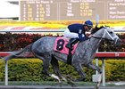 "Dunkirk has been retired from racing for stallion duty at Ashford Stud. <br><a target=""blank"" href=""http://www.bloodhorse.com/horse-racing/photo-store?ref=http%3A%2F%2Fpictopia.com%2Fperl%2Fgal%3Fprovider_id%3D368%26ptp_photo_id%3D7783562%26ref%3Dstory"">Order This Photo</a>"