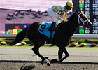 Filly Dixie Strike Favored for Queen's Plate