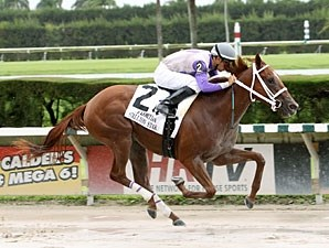 Putyourdreamsaway wins the 2012 Susan's Girl Division of the Florida Stallion Series.