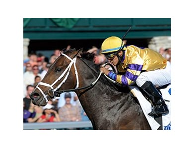 "Stately Victor won the Toyota Blue Grass Stakes this spring at Keeneland.<br><a target=""blank"" href=""http://www.bloodhorse.com/horse-racing/photo-store?ref=http%3A%2F%2Fpictopia.com%2Fperl%2Fgal%3Fprovider_id%3D368%26ptp_photo_id%3D8885708%26ref%3Dstory"">Order This Photo</a>"