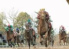 Smarty Jones Winner Far Right Ready to Return