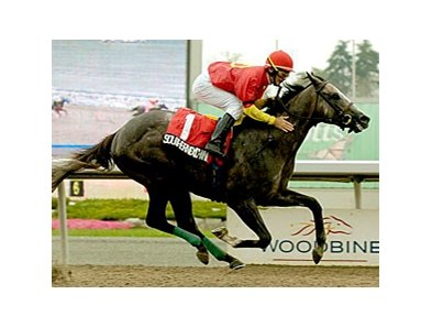 Southern Exchange won the Colin Stakes at Woodbine July 19.