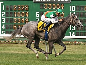 Strike It Rich wins the 2010 Boiling Springs.