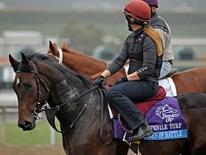 Lines of Battle - Breeders' Cup 2012