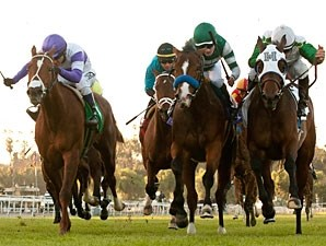 Sky High Gal wins the 2013 Blue Norther Stakes.